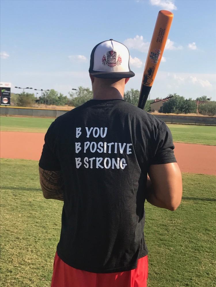 Cam In Home Baseball